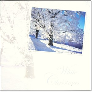 """Winter Scenes"", 12 Luxury Christmas Cards,"