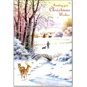 """Winter Scenes"", 10 Luxury Christmas Cards,"