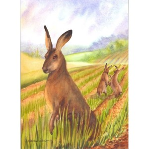 """March Madness - Hare in Spring"", Mariana-Ar"