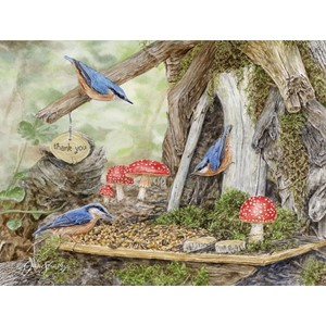 """Fairy Garden"" Boxed Note Cards 13/13"