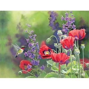 """Flavors of Summer"" Assorted Boxed Note Cards 12/12"